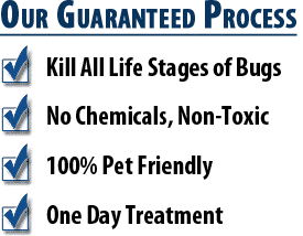 Phoenix Bed Bug Heat Treatment Benefits